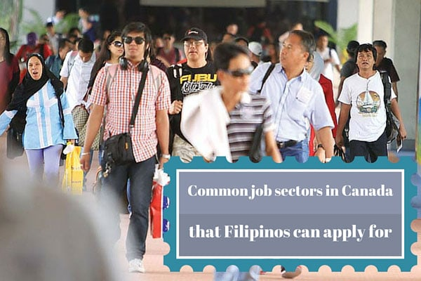 Common job sectors in Canada that Filipinos can apply for