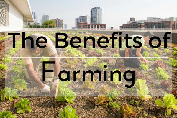 The Benefits of Farming