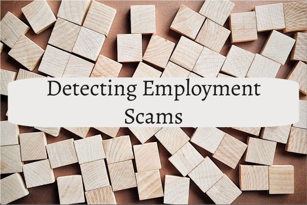 Detecting Employment Scams